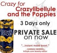 Crazylibellule1
