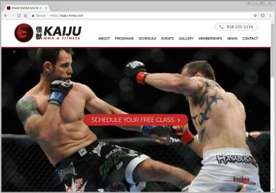 Kaiju MMA and Fitness